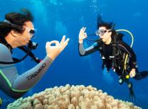 plongée sous marine martinique